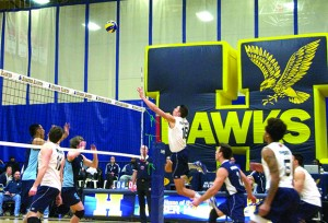 Andre Brown, one of the best men's volleyball players to ever don a Hawks uniform, has played his final season at Humber.
