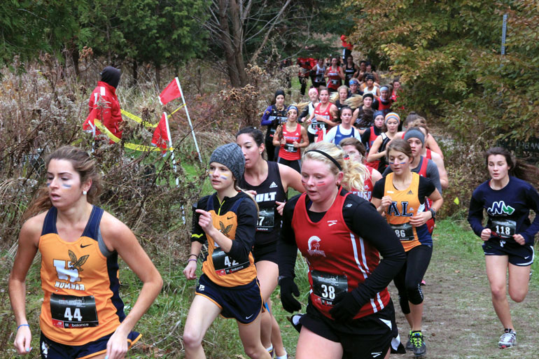 Humber College hosted the 2013 CCAA Cross-Country Nationals this past year. The Hawks won 35 medals in both provincial and national play. | Peter Davey