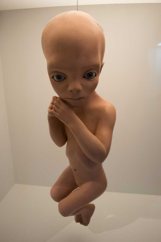 Original Star Child from Kubrick's 2001: A Space Odyssey among items on display at TIFF Bell Lightbox.  Photo by Lucy Hagerup-Labrosse
