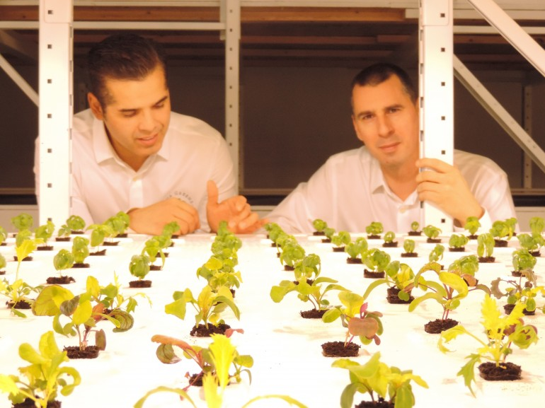 Sustainable Energy and Building Technology grads Pablo Alvarez and Craig Petten show off their hydroponic system