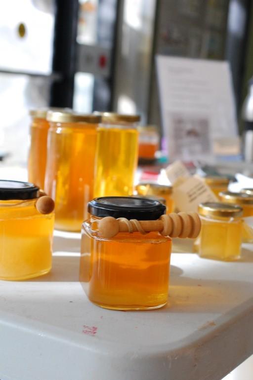 Arboretum's Centre for Urban Ecology held beekeeping workshop Oct. 10. (Photo: Sarah Minard)