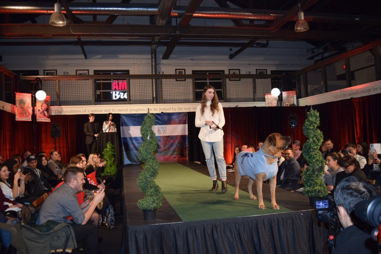 Mr. Jimmy and his owner Agnes Tepper posing for photos at Purina PawsWay's dog fashion show. (Christina Mulherin)