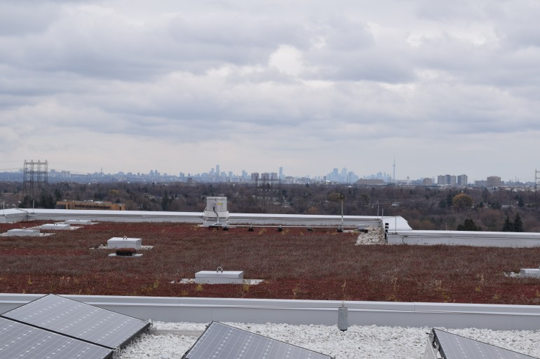 The view of Toronto from Humber's LEED Gold certified roof. (Tyler Hehn)